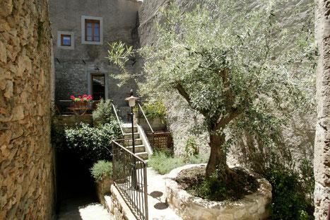 gite Pays Cathare Gites de France dans l'Aude à Caunes Minervois