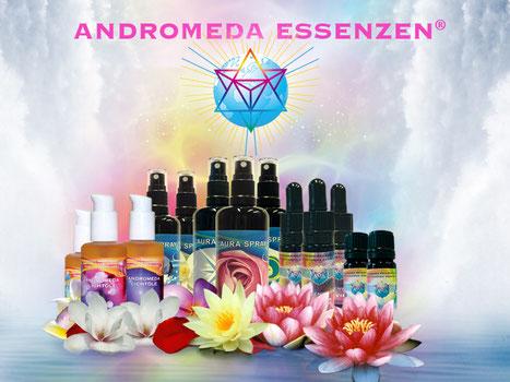 Andromeda Essenzen, Gundula Ledl