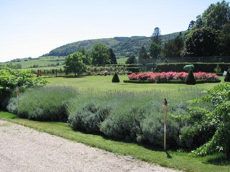 Der Englische Garten in Wachenheim öffnet sich zur Landsschaft der Mittelhaardt. Foto: Weingut Bürklin-Wolf