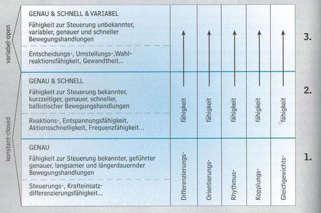 Abbildung 1: Hierarchisches Modell der koordinativen Fähigkeiten nach Hirtz, Kirchner & Pöhlmann, 1994, S.132