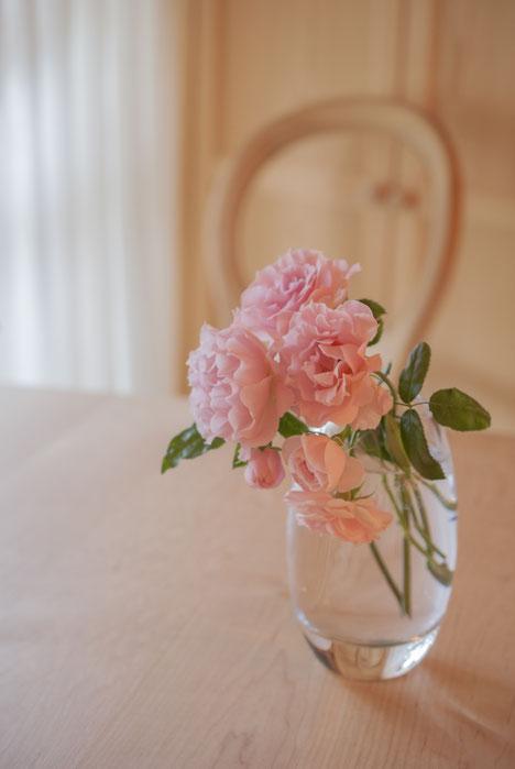 Best roses from my little garden, Fleur*Fleur*