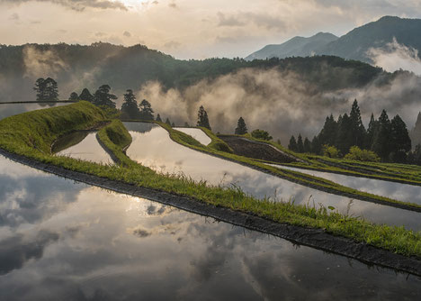 Rice terraces in Hata, Takashima