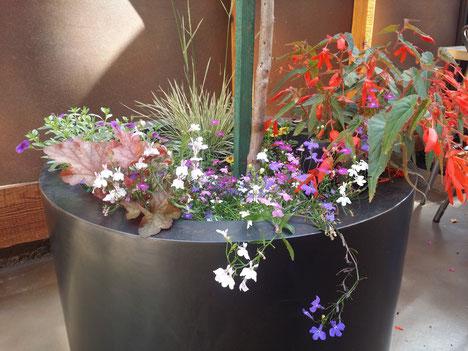 grant irish circular metal planters