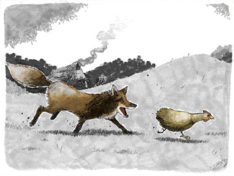Ilustracion de gallina kollonka escapando de zorro gracias a su falta de cola, que les permitia arrancar mas facilmente del zorro.