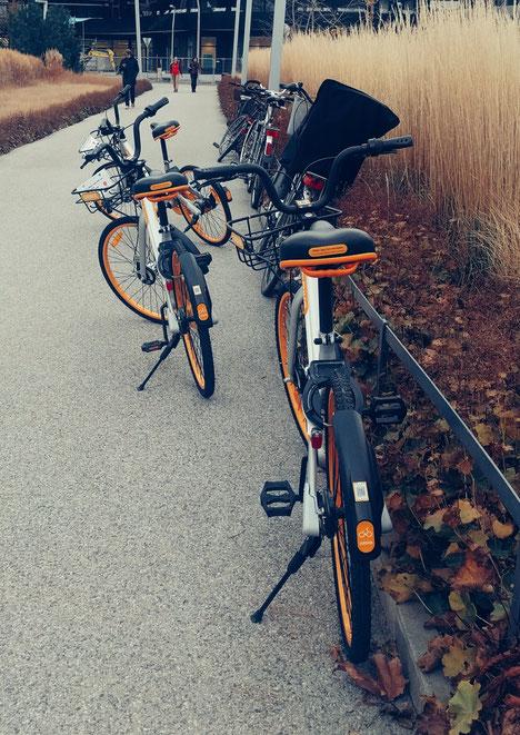 O-Bikes am Gehsteig