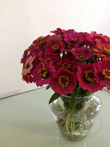 ノーフラワーノーライフって書いたけど、花のある生活してんのは、一年の半分かな?w