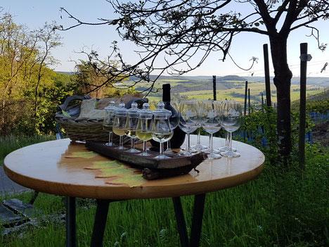 Aromaproben bei Weinwanderung