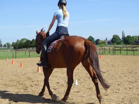 Paardrijles op maat voor kinderen