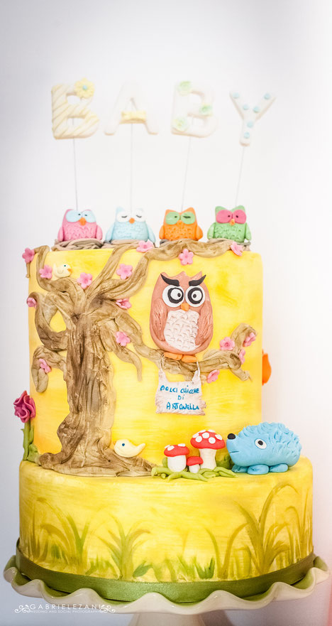 torta gufi- baby shower-dolci-la spezia- liguria-feste-eventi-nascita-bimbi