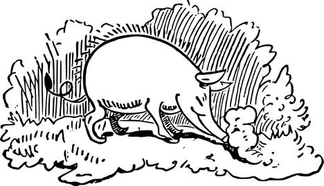 Das Gedicht von Wilhelm Busch über die Trüffelsuche mit dem Trüffelschwein