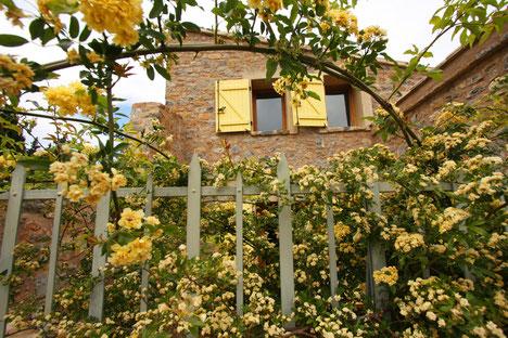 gite Pays Cathare Gites de France dans l'Aude  à Embres et Castelmaure