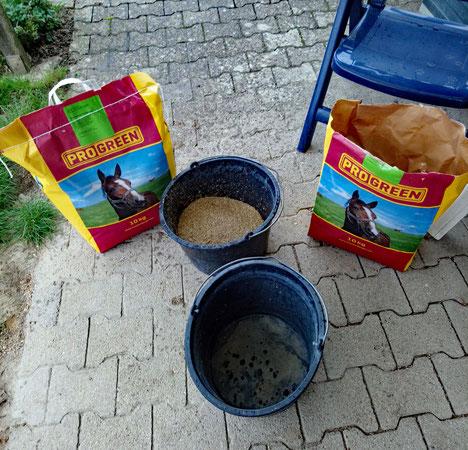 20 kg Nachsaat für die Pferdeweide: Mischung Compense von Freudenberger