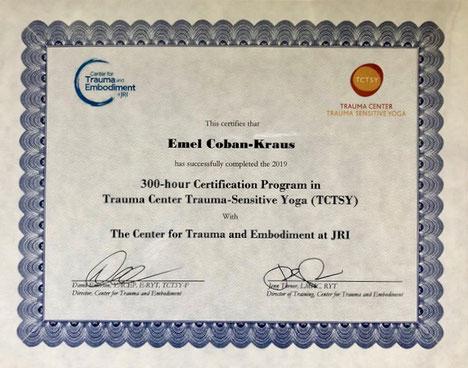Zertifikat TCTSY Certificate TCTSY