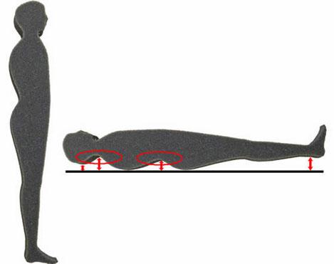 姿勢判定 6体型 Wライン・Sラインタイプ