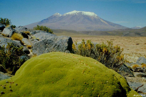 Bolivien - nahe dem Salar de Uyuni