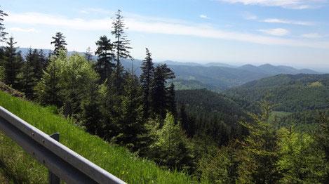 """Schöner Ausblick von der Westauffahrt zur """"Kaltenbronner Wand"""""""