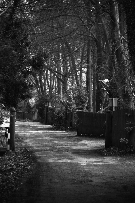 The processed shot - levels, increased high light tones, decreased mid tones and as it then was too contrasty reduced the black output by 10%. Its 'Sea Lane' the back lane that runs down to the sea at St Margarets.