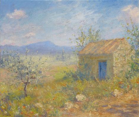 Le cabanon romantique typiquement provençale de la plaine de Tavernes avec le Grand Bessillon dans le fond. Un jeune olivier et un jeune amandier cache en parti le jolie cabanon du premier plan.