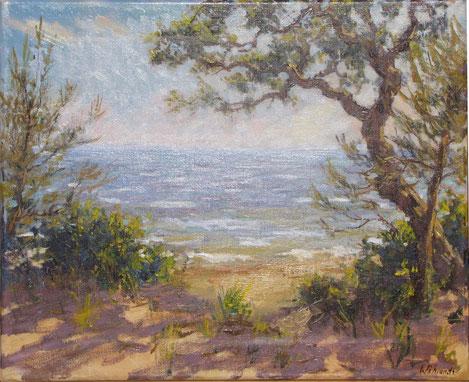 la plage du pélegrin et les reflets du soleil sur l'eau