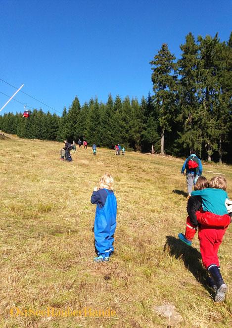 """Aufstieg auf den Wurmberg: unsere """"Seeräuber"""" sind über 400 Höhenmeter hoch gestiegen"""