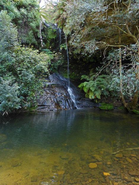Lyrebird Dell waterfall