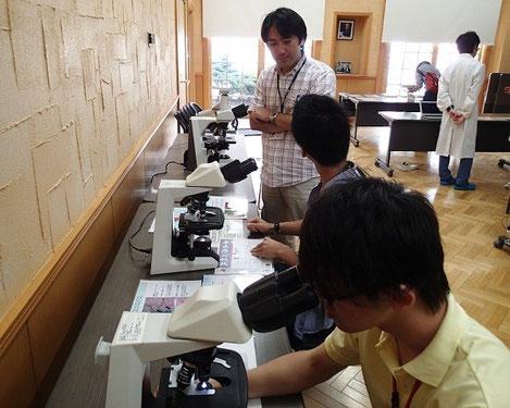 高校生を対象にした顕微鏡による寄生虫の観察実習。西川先生は高校生の指導にも熱心
