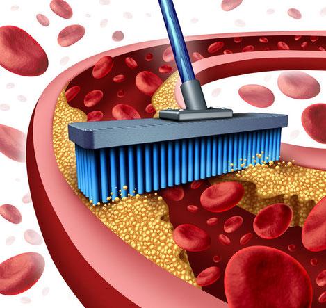 alimentos que ayudan a limpiar las arterias