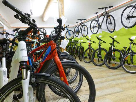 E-Bikes FLYER, E-Mountainbikes und E-Rennvelos TREK mieten im E-Bike Center Veloatelier Wimmis bei Spiez