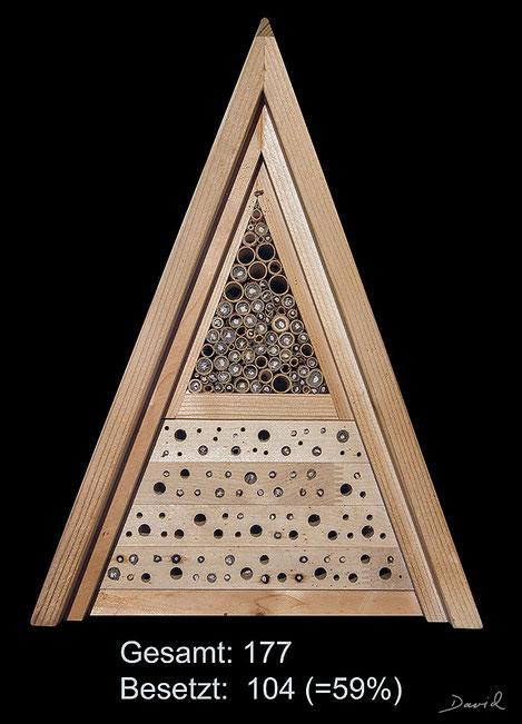Insektenhotel Insektennisthilfe Nisthilfe Jürgen Schwandt Schilf Bohrungen im Hartholz Wildbienen wildbee insect hotel nesting aid  reed hardwood