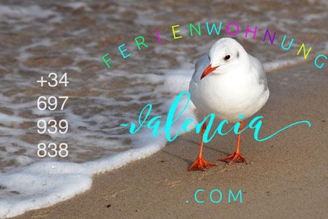 www.ferienwohnung-valencia.com
