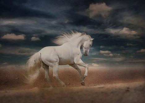 Les anges des armées célestes chevauchent des chevaux blancs et sont vêtus d'un fin lin blanc, le blanc symbolisant la sainteté et la pureté. Ils mènent une guerre juste.
