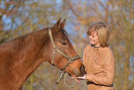 A l'écoute de son cheval, comprendre ses besoins
