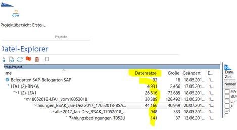 """Der Ausschnitt aus IDEA zeigt die Spalte """"Datensätze"""" in der die Anzahl der Datensätze oder Linien der importierten Datei gezeigt werden."""