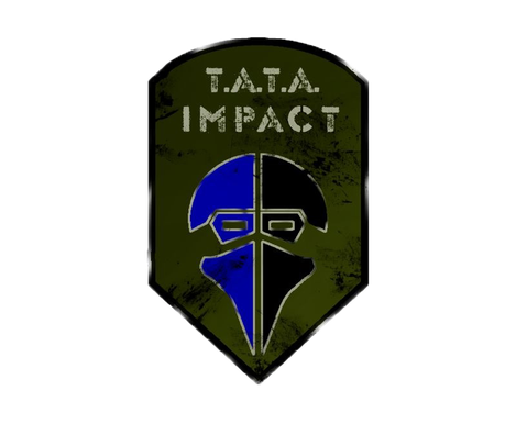 Partnerteam TATA Impact