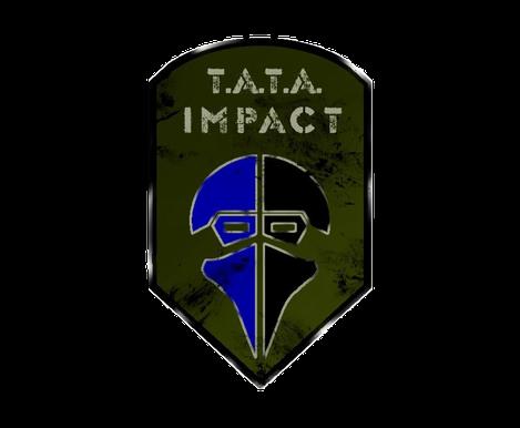 Partnerteam TATA Impact