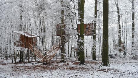 Baumhaus Freiraum u. Baumtraum, Winter. Bild: Baumhaushotel Solling