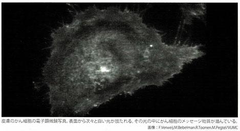 皮膚のがん細胞