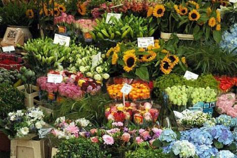 Ho thi ky flower market ho chi minh