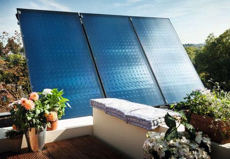 Solarkollektor Logasol 1.0 auf Dach umgeben von Pflanzen
