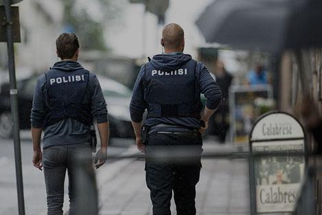 В Финляндии задержаны 11 граждан Грузии