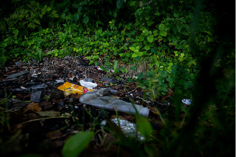 Новые штрафы за выброс мусора в Грузии
