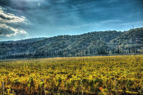 Грузия атаковала полутысячей ракет облака для защиты виноградников