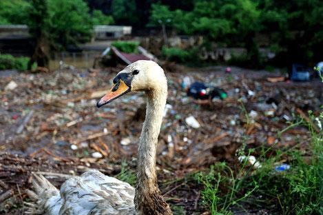В Грузии почтили память жертв разрушительного наводнения в Тбилиси