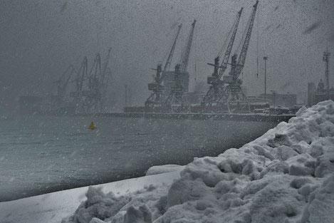 Мощнейший за 80 лет снегопад накрыл Грузию