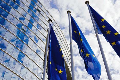 Евросоюз введет безвизовый режим для Грузии не раньше марта
