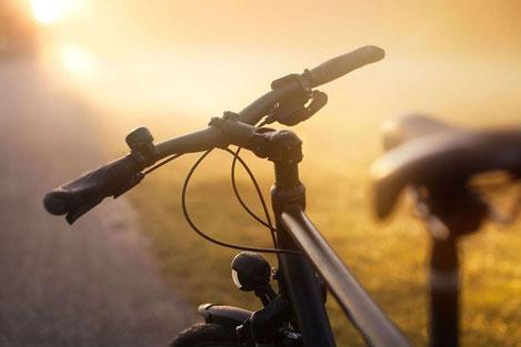 Начинается серийное производство первых грузинских велосипедов
