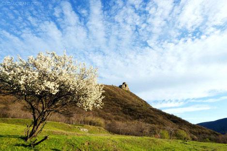 Грузия - Найдите весну в конце Февраля