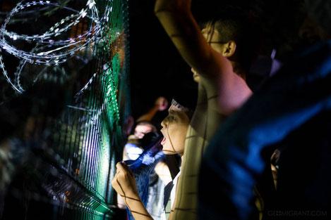 Австрия запретила предоставление убежища гражданам Грузии