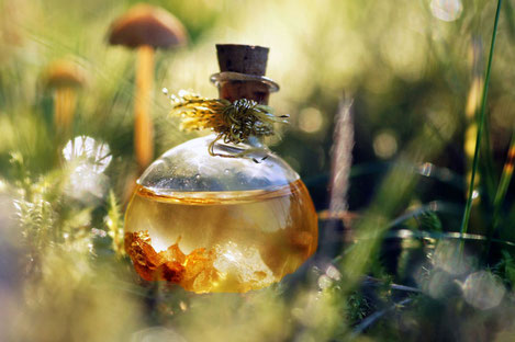 Грузия выводит собственную парфюмерию на мировой рынок