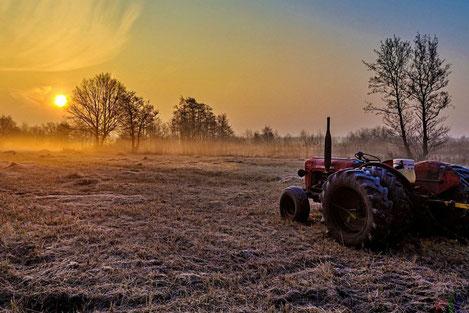 Грузию настигла аграрная угроза